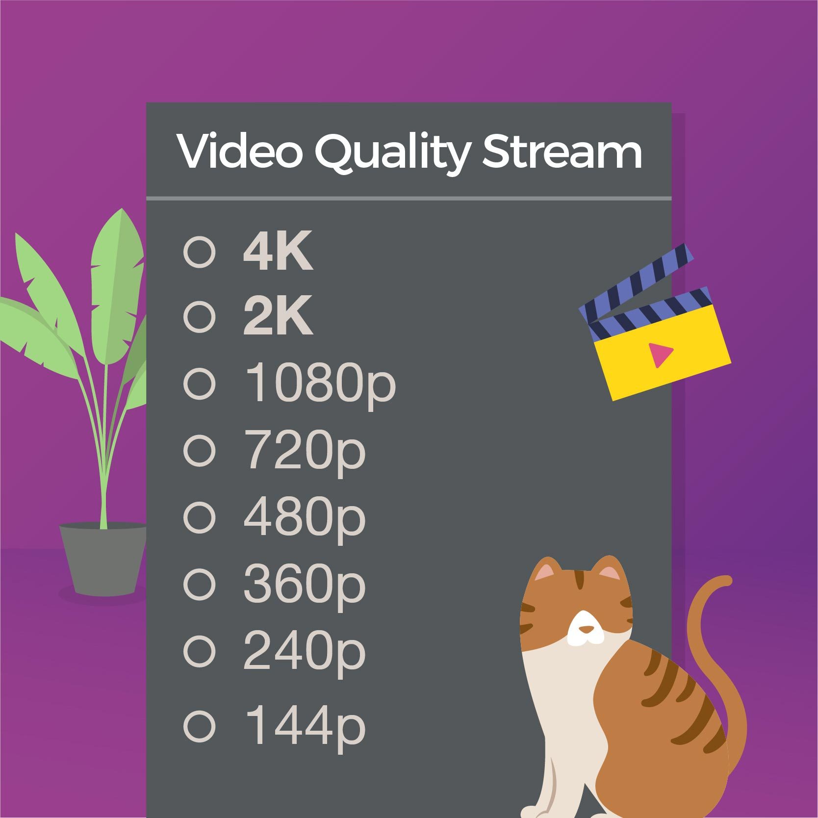 What video quality stream normally?
